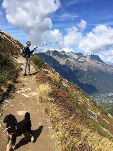 hiking on a path during dog travel French Alps