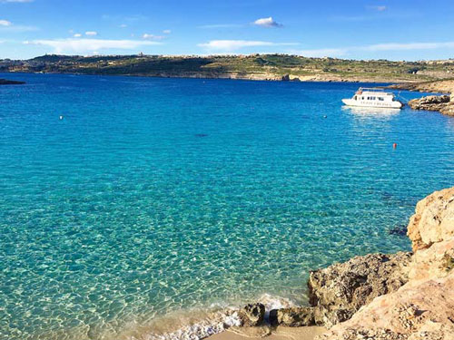 Visiting the Blue lagoon by boat during dog travel Malta