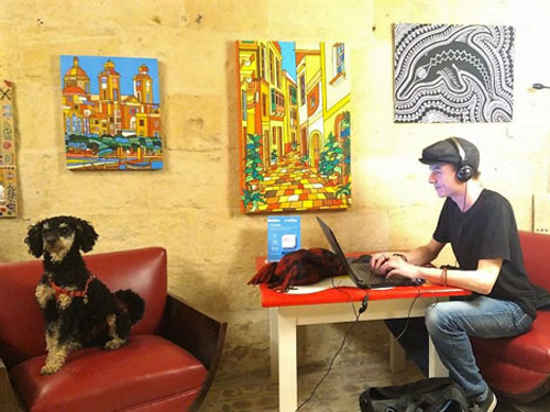 Dog and guy working at Cocohub Malta