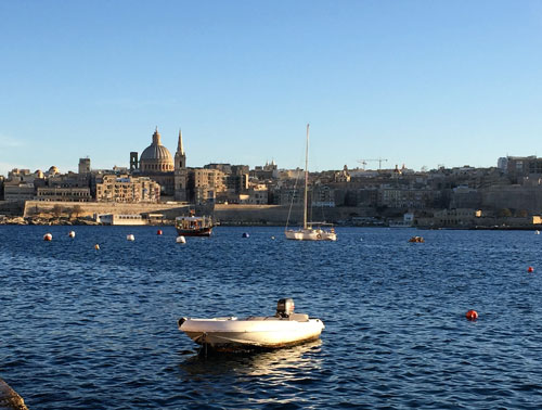 View of Valetta, water and boats, dog boat tour