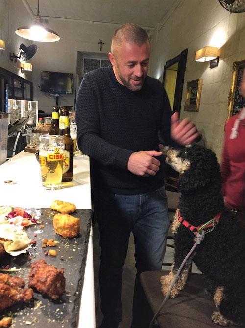 Dog in bar with Maltese man