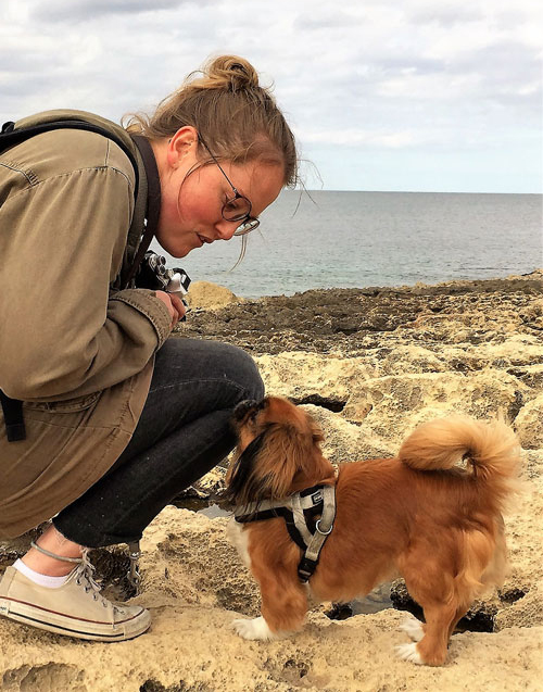 Beautiful Pickinese dog on beach with owner during a bus tour