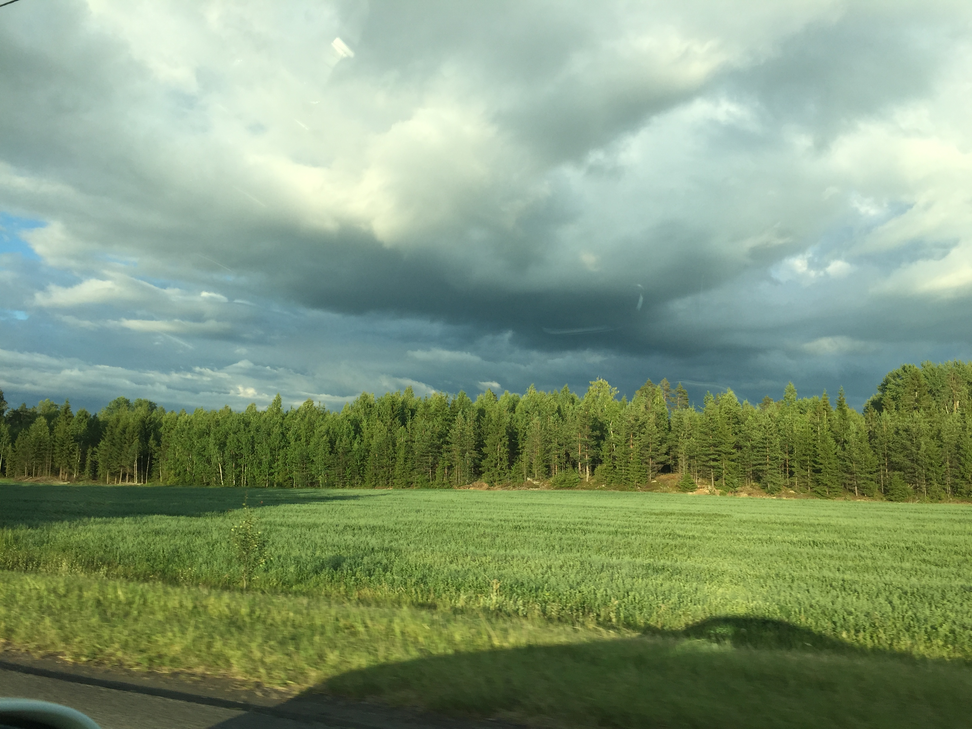 Green fields and forest in Finland