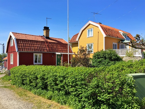 Two Swedish wooden houses and a big green hedge
